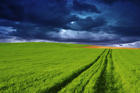 Rural landscape blue sky Stock Photo - 6935762