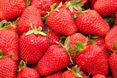 fraise: fraises fra�ches  Banque d'images