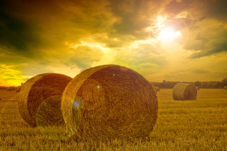 bale: End of day over field with hay bale