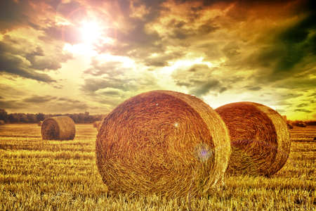 End of day over field with hay bale Stock Photo - 8752326