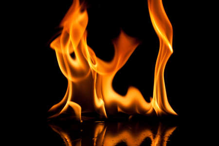 Close-up of fire and flames on a black background photo