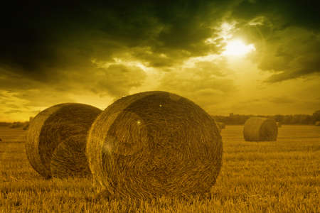 End of day over field with hay bale Stock Photo - 9344936
