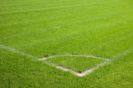 Football grass background photo