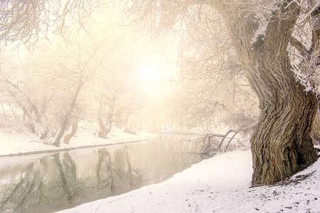 Frozen landscape river in Hungary, Zagyva photo