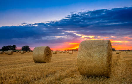 hay bales: End of day over field with hay bale in Hungary- This photo make HDR Stock Photo