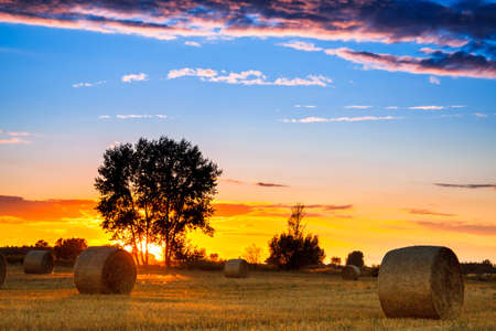 End of day over field with hay bale in Hungary- this photo made by HDR technic photo