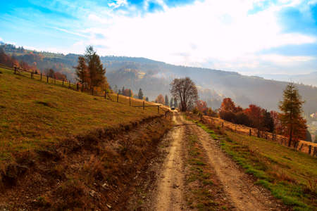 Colorful autumn landscape in the mountains in Transylvania, Romania. photo