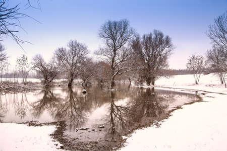 Winter landscape river Zagyva in Hungary photo