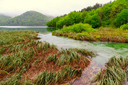 Plitvice lakes national park in Croatia photo