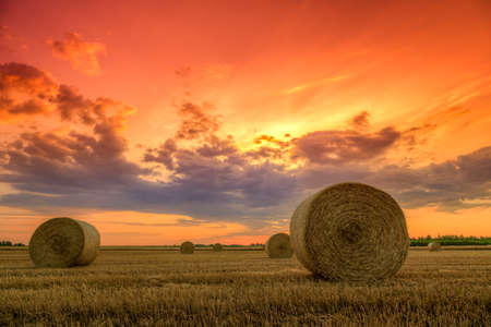 End of day over field with hay bale in Hungary photo