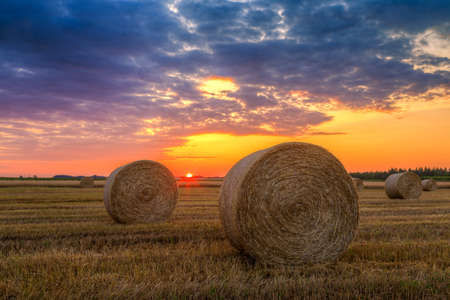Sunset over farm field with hay baless photo