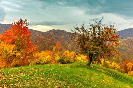 Autumn landscape in mountain Carpathian, Romania photo