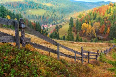 Foggy summer morning in the mountains. Carpathian, Romania photo