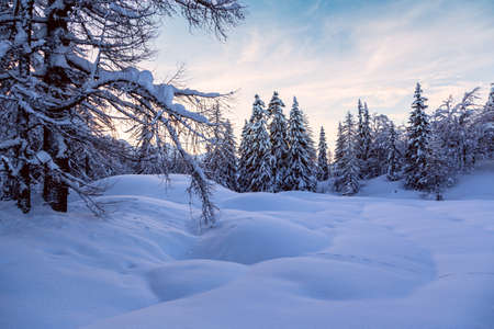 natural landscape: Winter landscape near Vogel ski center in  mountains Julian Alps, Slovenia
