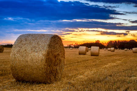 technic: End of day over field with hay bale in Hungary. This photo make in HDR technic Stock Photo