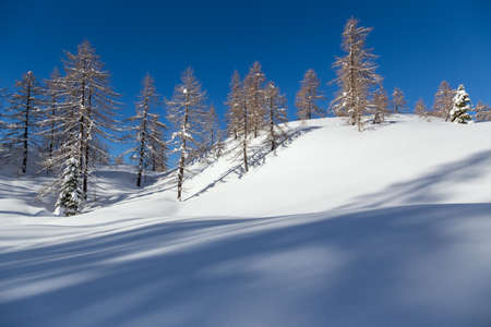 Winter landscape near Vogel ski center in mountains Julian Alps, Slovenia photo