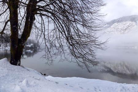 bohinj: Winter on the lake Bohinj in Triglav national park, located in the Bohinj Valley of the Julian Alps