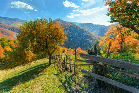 landscape scene: Colorful autumn landscape scene with fence in Transylvania mountain-Romania