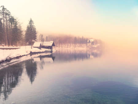 fog white: Winter time in lake Bohinj in Triglav national park-Slovenia