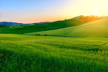 Zomer in de velden van Toscane op de zonsondergang-Italië Stockfoto