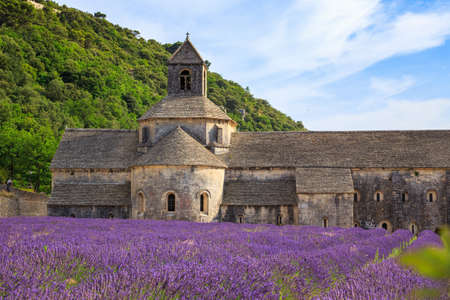 vaucluse: An ancient monastery Abbaye Notre-Dame de Senanque ( Abbey of Senanque). Vaucluse, France
