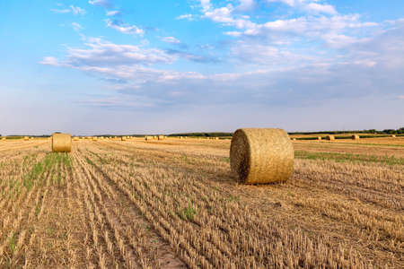 hayroll: Hay bales on the field after harvest, Hungary Stock Photo
