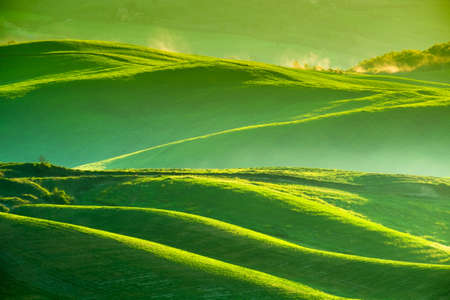 pienza: Waves hills, rolling hills, minimalistic landscape with green fields in the Tuscany. Italy