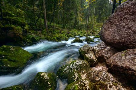 salzach: A rapid  mountain creek running deep in a dense forest near Golling an der Salzach in Austria, Europe