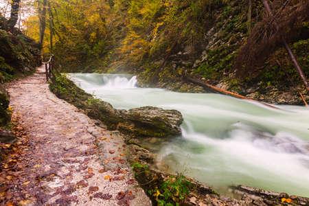 Vintgar gorge and wooden path near Bled, Slovenia.Europe