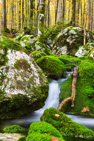 View of a beautiful autumn creek near Bohinj.Slovenia Stock Photo