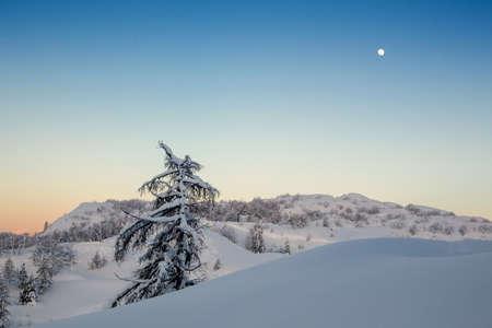 Simple, minimal winter landscape somewhere in Slovenia-Europe Stock Photo