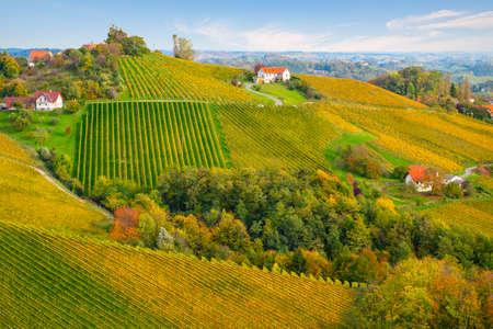 colors of vineyard in autumn in Slovenia close to the border with Austria south Foto de archivo - 133552384