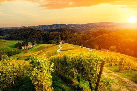 Berühmte herzförmige Weinstraße im Herbst, Blick von Spicnik bei Maribor in Slowenien.