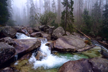Cold stream in Great Cold Valley in the National Park High Tatra, Slovakia Stock fotó