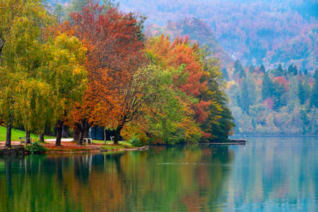 Beautiful autumn at lake Bled in Slovenia. Europe