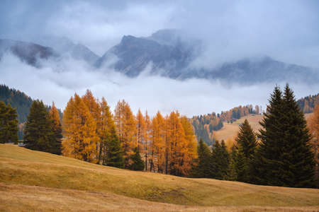 Autumn landscape at Seiser Alm in Dolomites, Italy