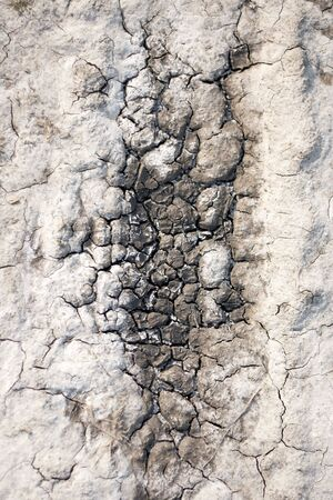 earth, sand in the crevices of drought, the background Stock Photo - 7011830