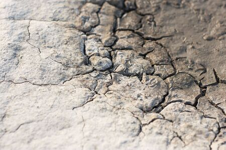 earth, sand in the crevices of drought, the background Stock Photo - 7011819