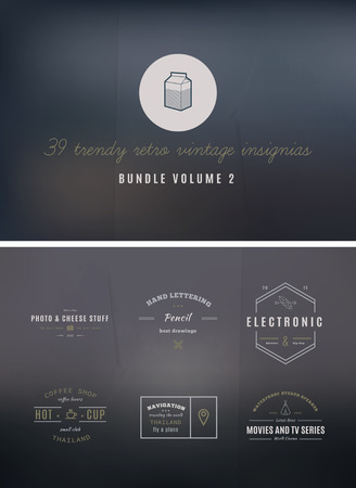 39 Trendy Retro Vintage Insignias Bundle Volume 2 Vector