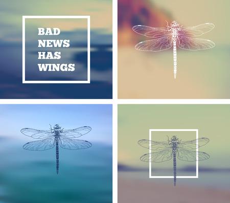 insecto: libélula insectos con con un fondo borroso.