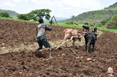Sedentary primitive agriculture which is confined to plateaus and highland areas