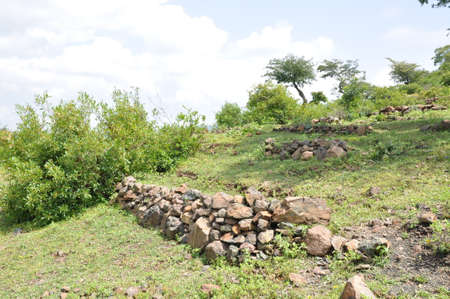 degraded: Regreening: Restoration of degraded land in Ethiopia