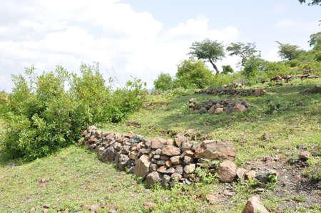 Regreening: Restoration of degraded land in Ethiopia