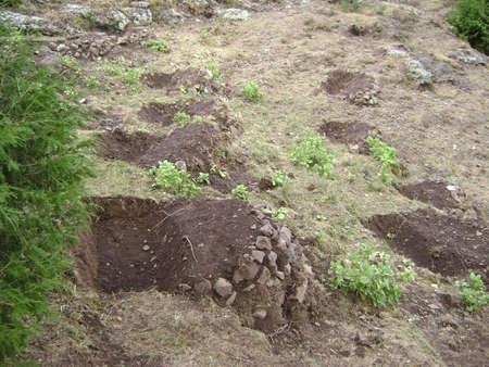 Restoring degraded land in Ethiopia