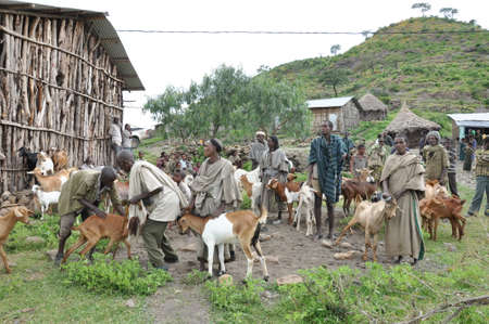 Ethiopian farmers with their animals