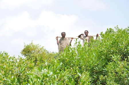 Two farmers watching a rehabilitated gully in Ethiopia