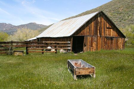 sierras: Taken in the Sierras - a rustic, old, abandoned barn. Rich with old wood and overgrown grass.