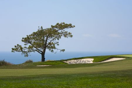 View from Torrey Pines Golf Course in San Diego California