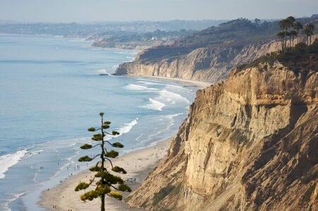 Torrey Pines Beach and Coast of San Diego, California