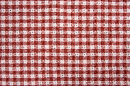 Red and White Checkered Picnic Blanket Detail Stock Photo - 3475194